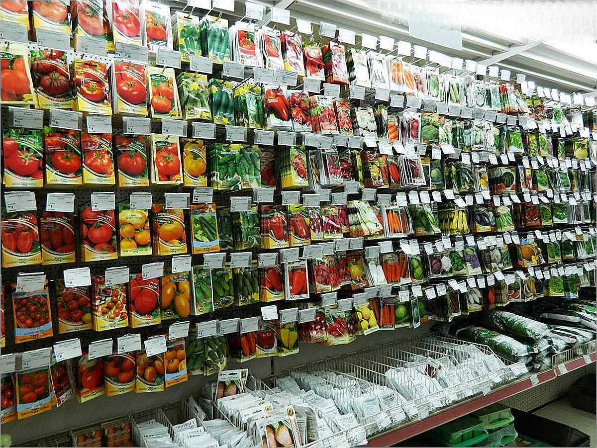 Как грамотно подготовить семена к посадке?