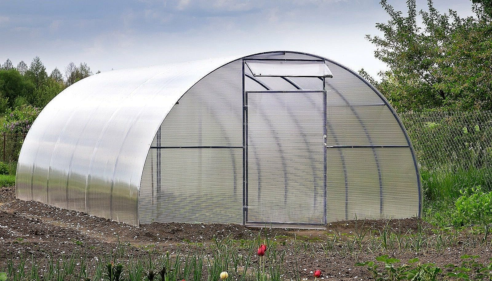 Какие работы ждут огородника в середине апреля?