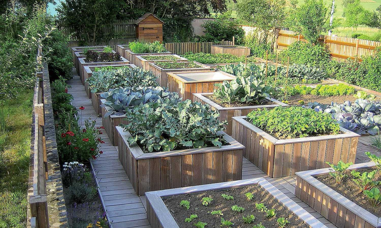 Каким должен быть современный огород