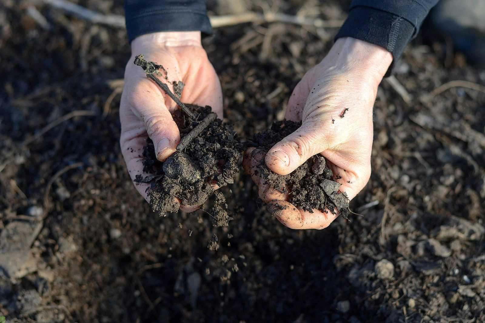 Подготовка почвы огорода к посадке весной