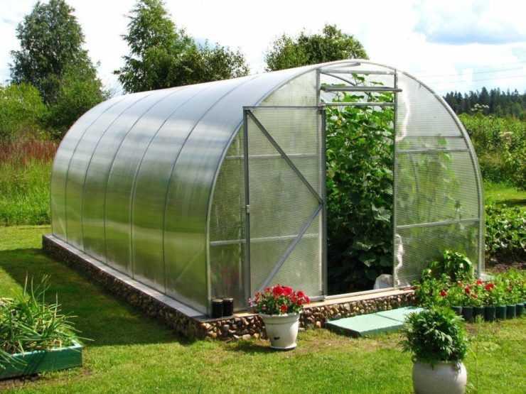 как правильно поставить теплицу в огороде
