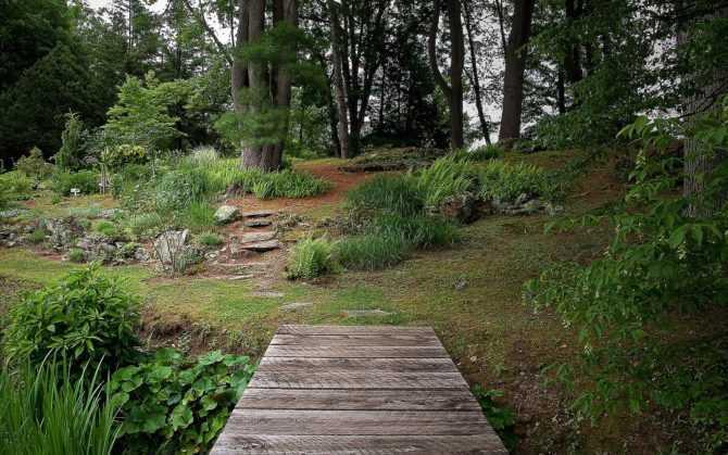 Экологический домашний сад — как настроить?